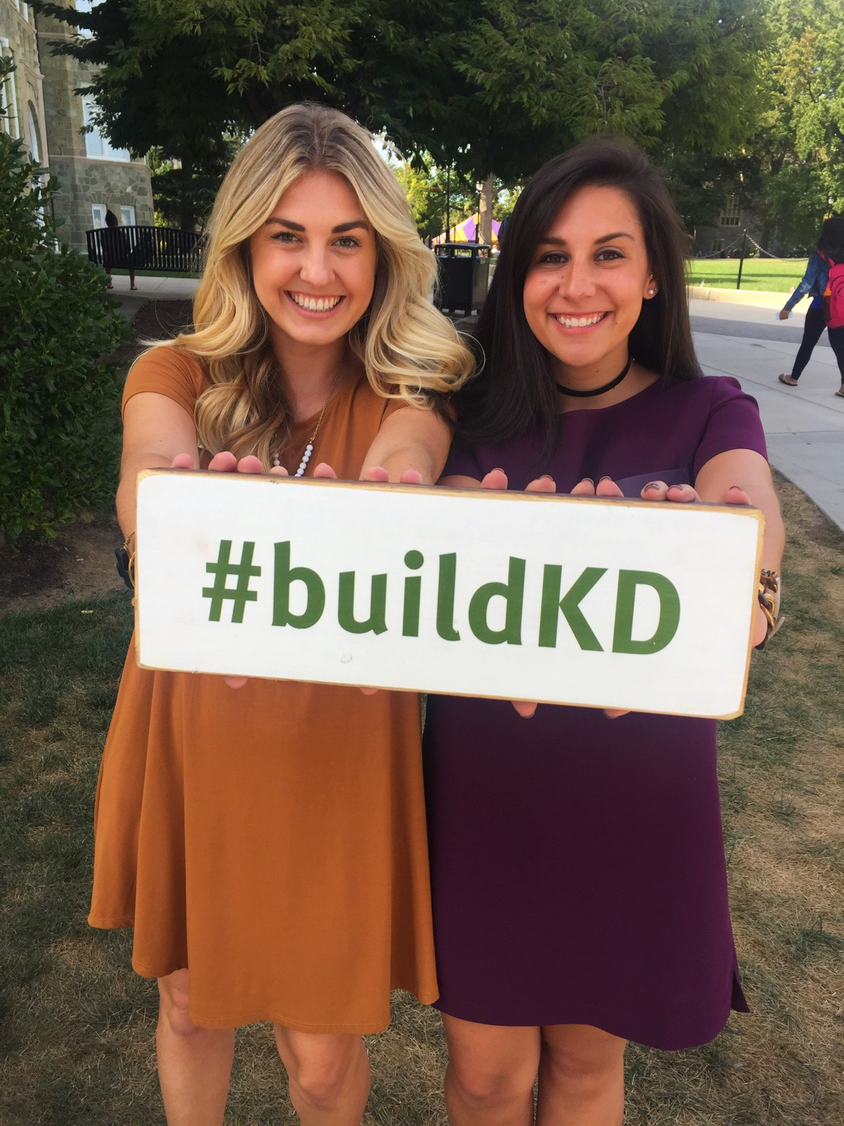 leadership development consultant build KD sign