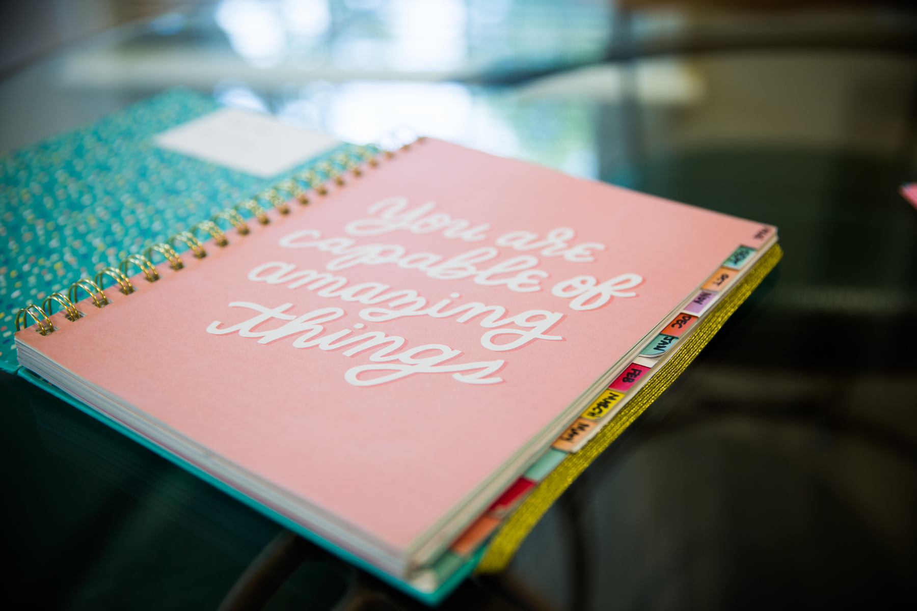 "a planner with the quote ""you are capable of doing amazing things"""